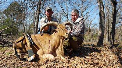 Texas Exotic Game Hunts