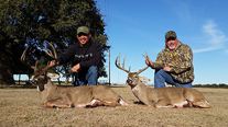 Deer Hunt Texas